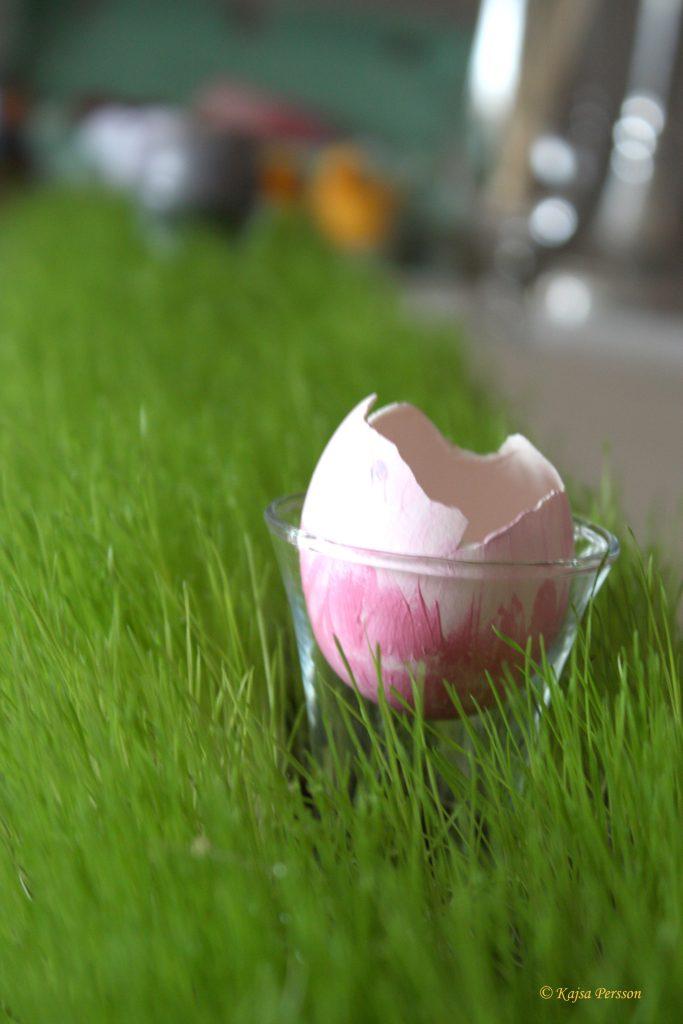 Söndrigt äggskal som vas till påskdukning