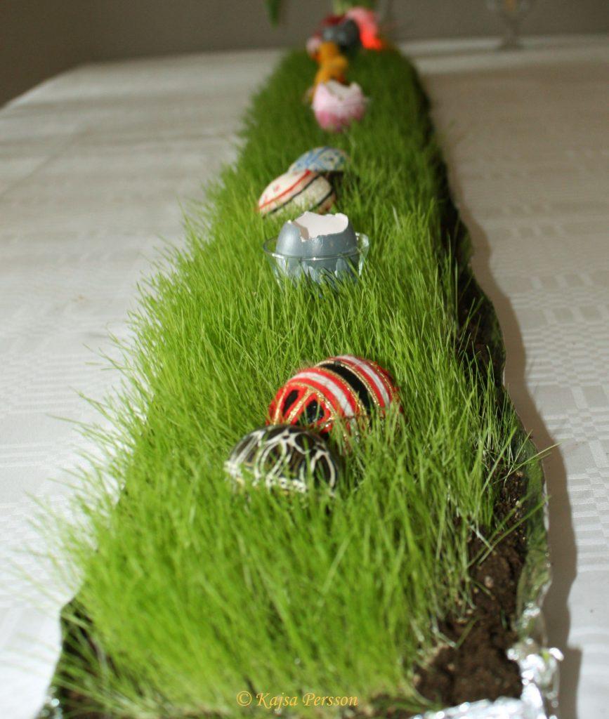 DIY, så gräsmatta påbordet