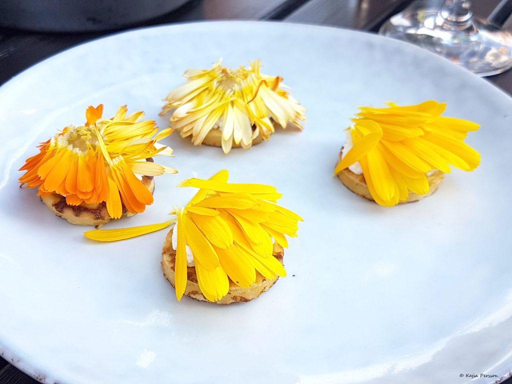 urdegs plättar med Färskost på BBuffel Mozzarella, Persika crème  från Skåne och ringblomma på toppen