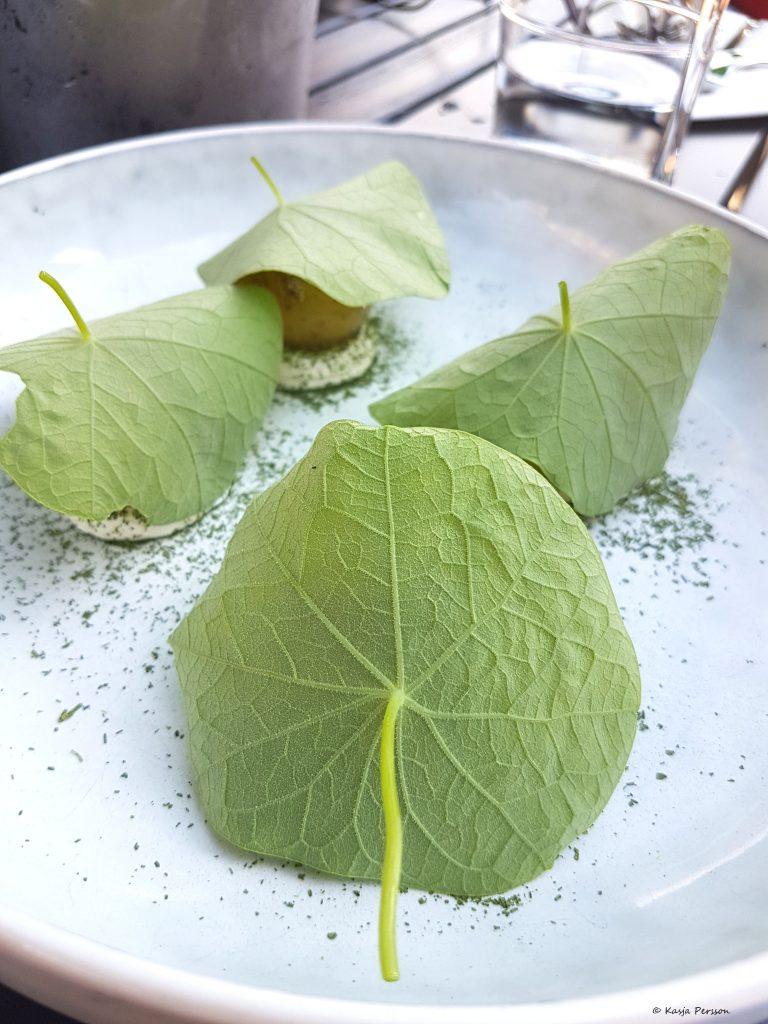 Nya Solistpotatis på en pepparrots crème med picklade senapsfrön och blad från Krasse.