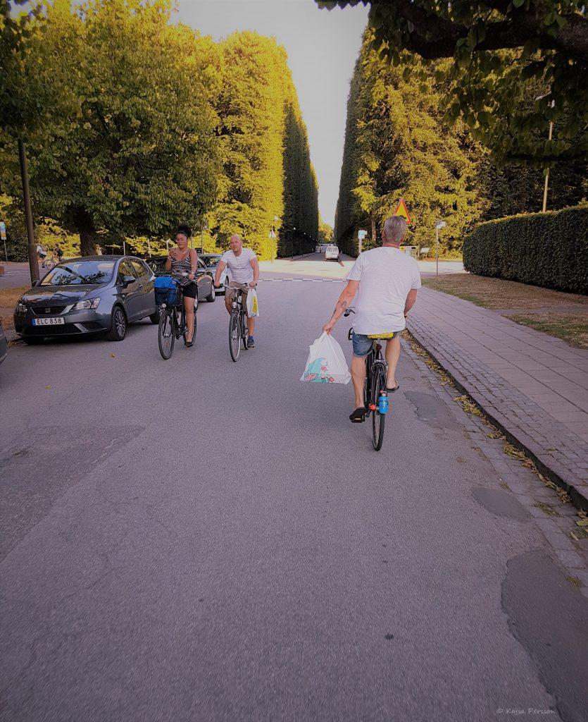 Cykla på Pizza picknick i parken